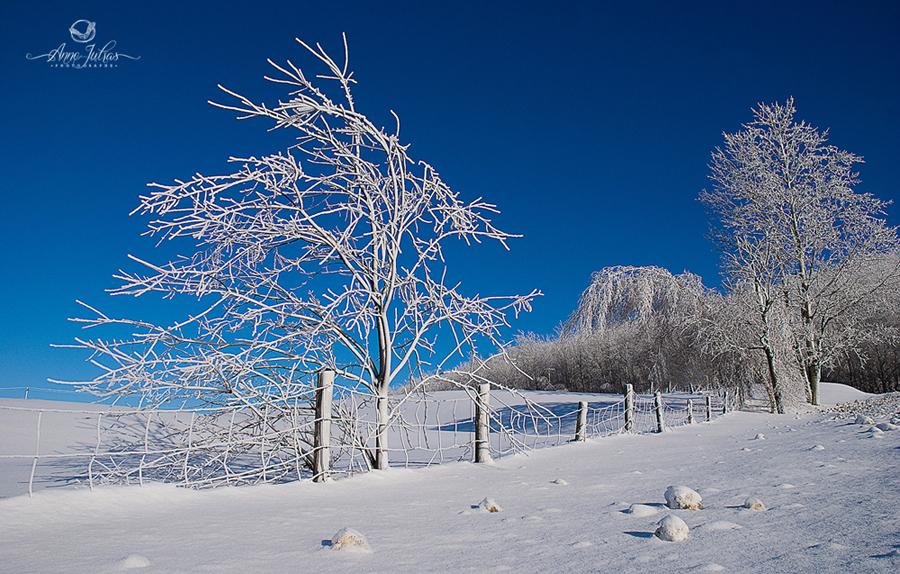 Photo de paysage : quel type de lumière favoriser | Directe