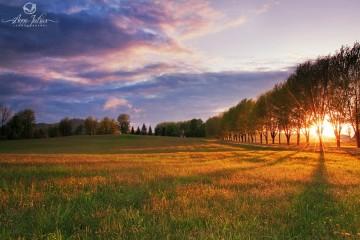 Photo de paysage : quel type de lumière favoriser ? 1ère partie