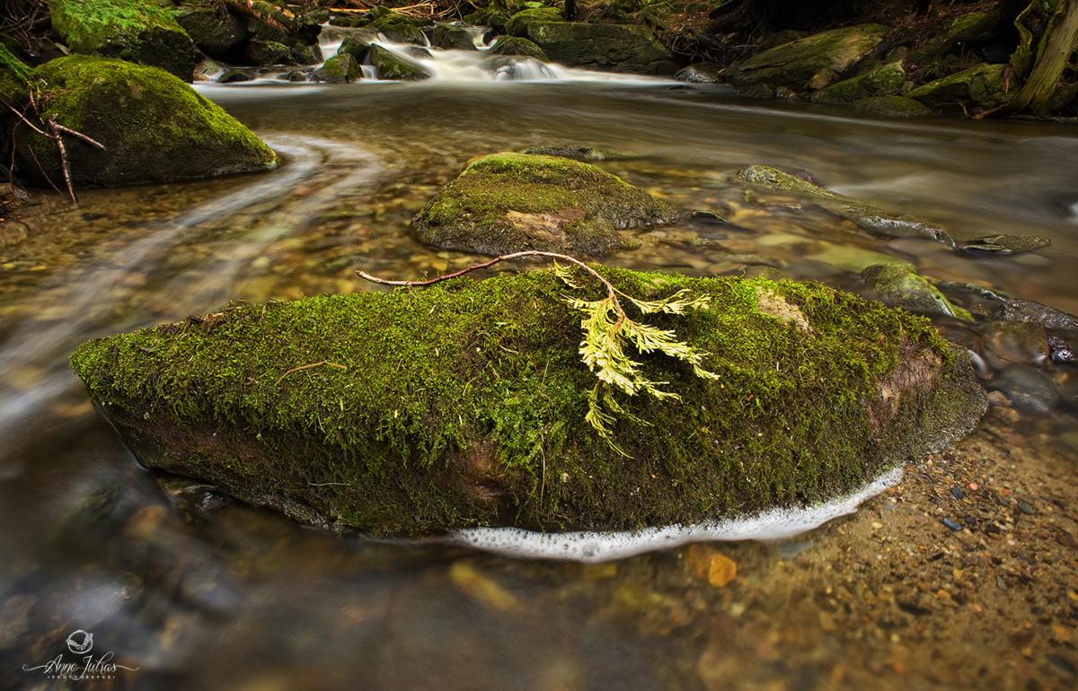 Photos de Cascade