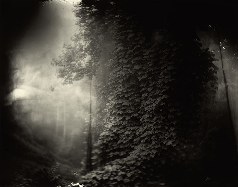 sally-mann-georgia-southern-landscapes-1996